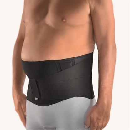 Attēls VarioPlus Back Support With Pad (112690)