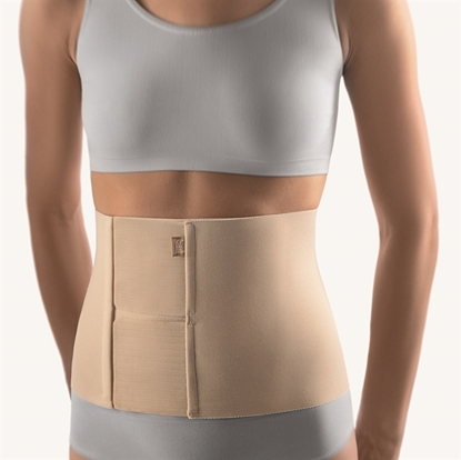 Picture of Abdominal Support (104100)